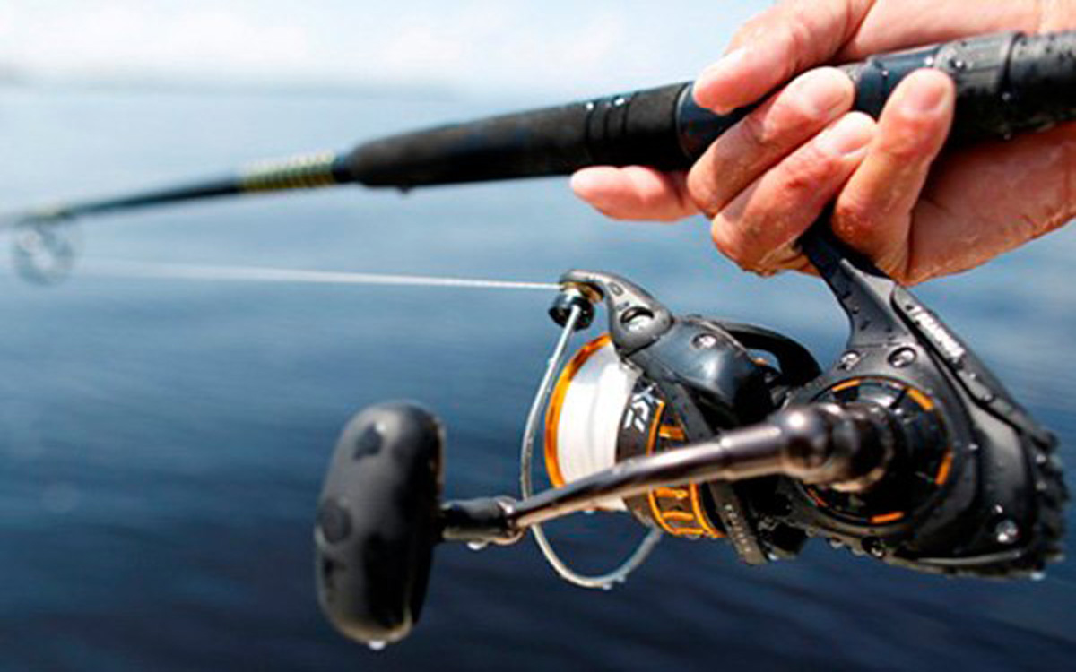 Daiwa BG 3000 Reel-CG Product Review