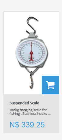 100kg hanging scale for fishing